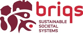BRIQS | Fit-Out Mastery